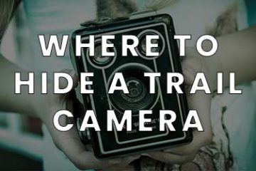 Where to hide a trail camera for home security featured image